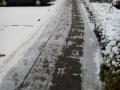 Winter_3.jpg